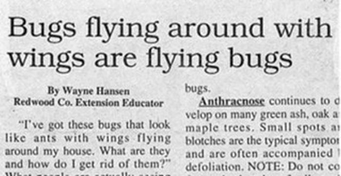 37 Unintentionally Hilarious Newspaper Headlines