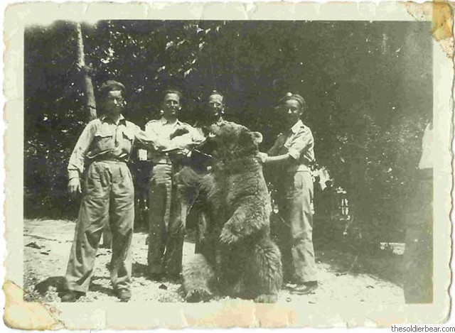 Soldiers Found A Orphaned Bear Cub While On Duty And It Soon After Became A War Hero