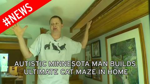 Man With Asperger's Syndrome Spends Over 15 Years Transforming His Home Into A Cat Playhouse