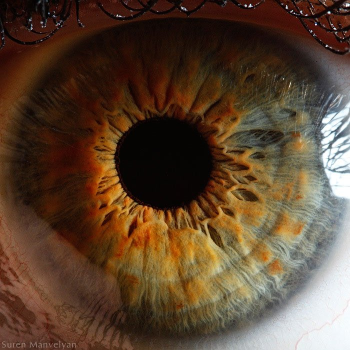 21 Extreme Close-Ups of the Human Eye