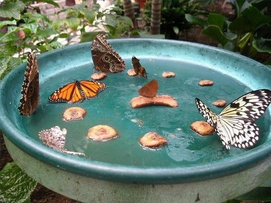 37 DIY Projects You Can Do In Your Backyard To Make Your Summer Amazing