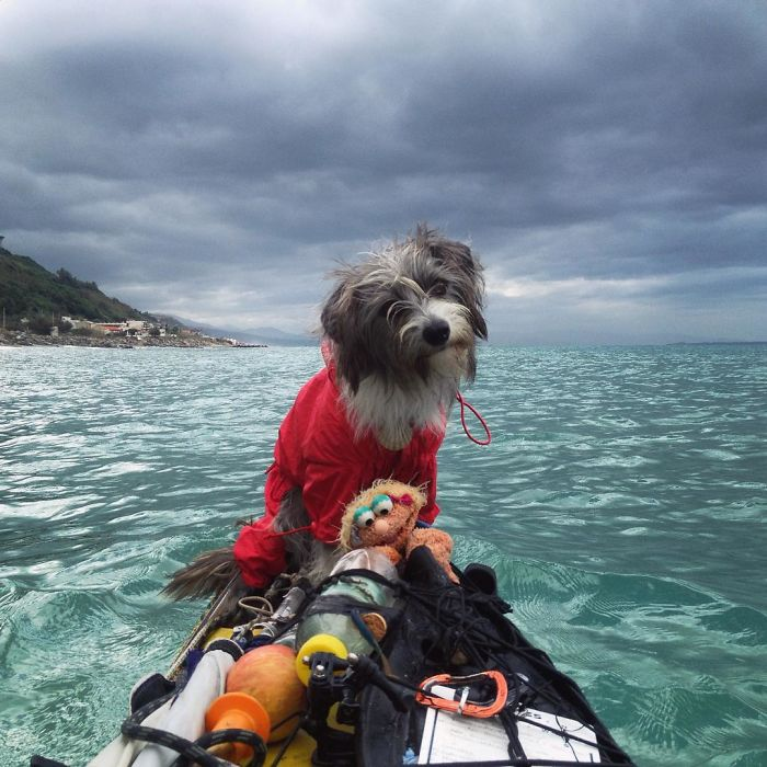 Man Quits His Job And Kayaks The Mediterranean Sea With His Rescue Dog