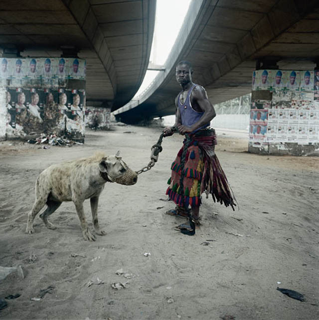 Men In Nigeria Train Wild Hyenas And Perform With Them In Order To Survive