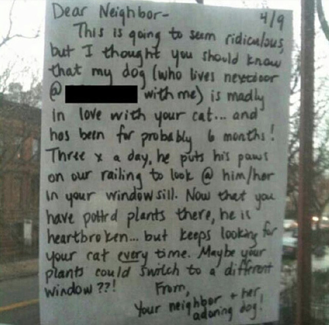Dog Owner Tapes Note On Neighbors Window After Finding Out He's In Love With Cat