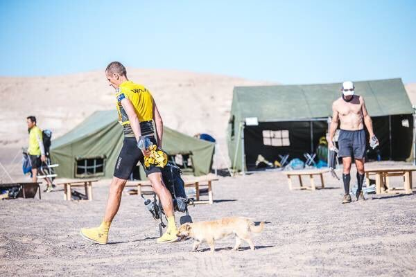 This Ultra-Runner Wants To Adopt The Dog That Ran Beside Him In A Grueling Gobi Desert Race