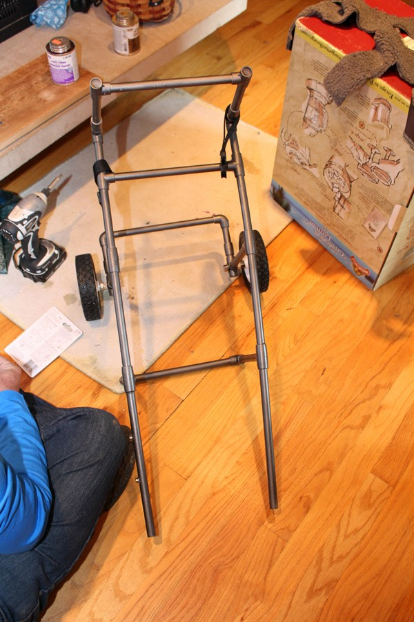 Dog's Owners Make A Custom Wheelchair Out of PVC Pipe After Their Dog Became Paralyzed