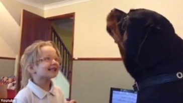 Giant Rottweiler Shows Soft Side By Singing Nursery Rhymes With Adorable Little Girl