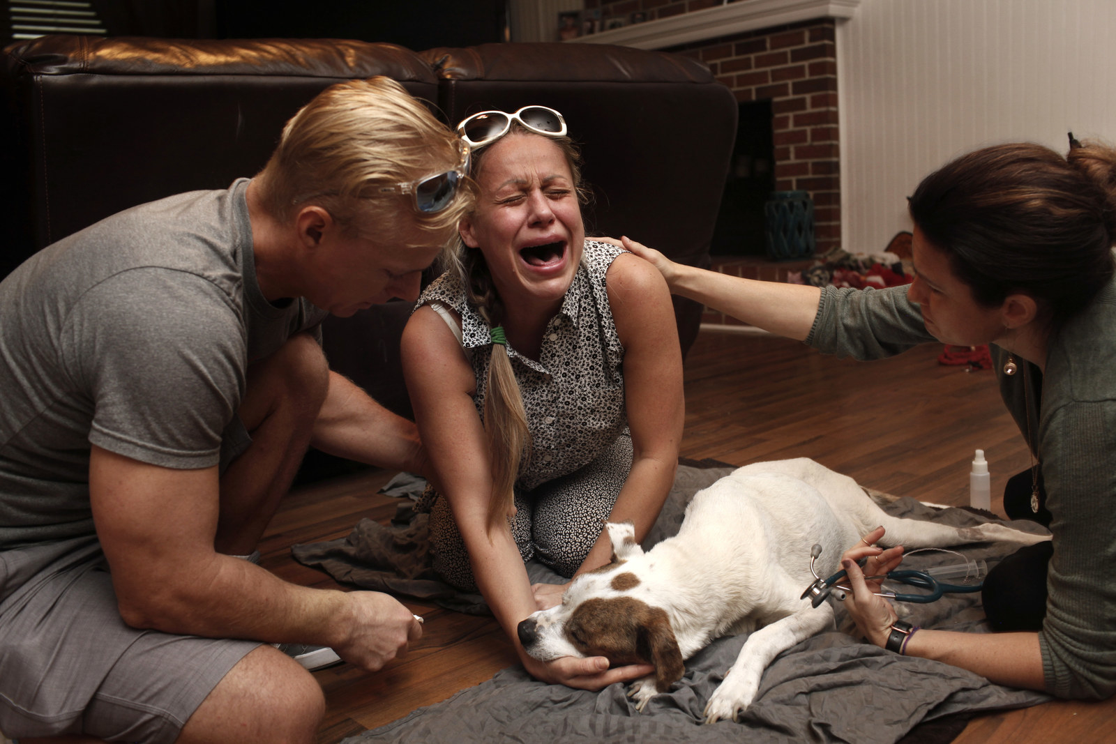 Photographer Captures The Emotional Final Moments Between Pets And Their Owners