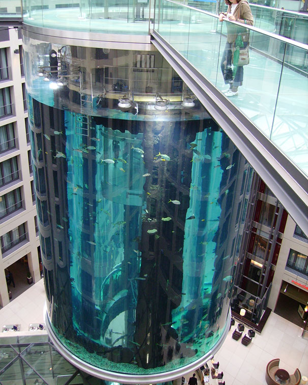 You Can Ride An Elevator Inside This 82 Foot Aquarium