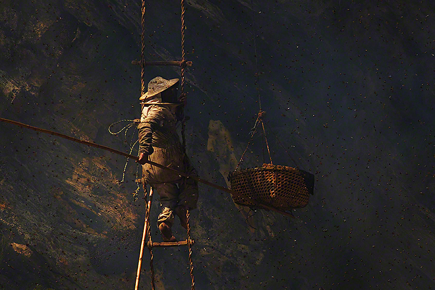 The Ancient Art Of Death-Defying Honey Hunting In Nepal (35 Pics)