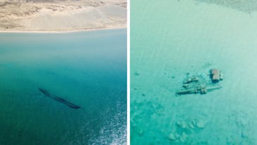 Sunken Shipwrecks Revealed When Ice Melts On Lake Michigan