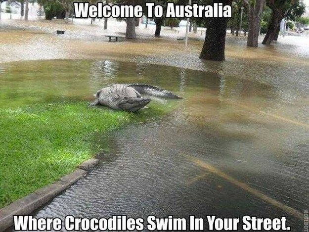 30 Pictures Proving Australia Is The Land Of 'Nope'