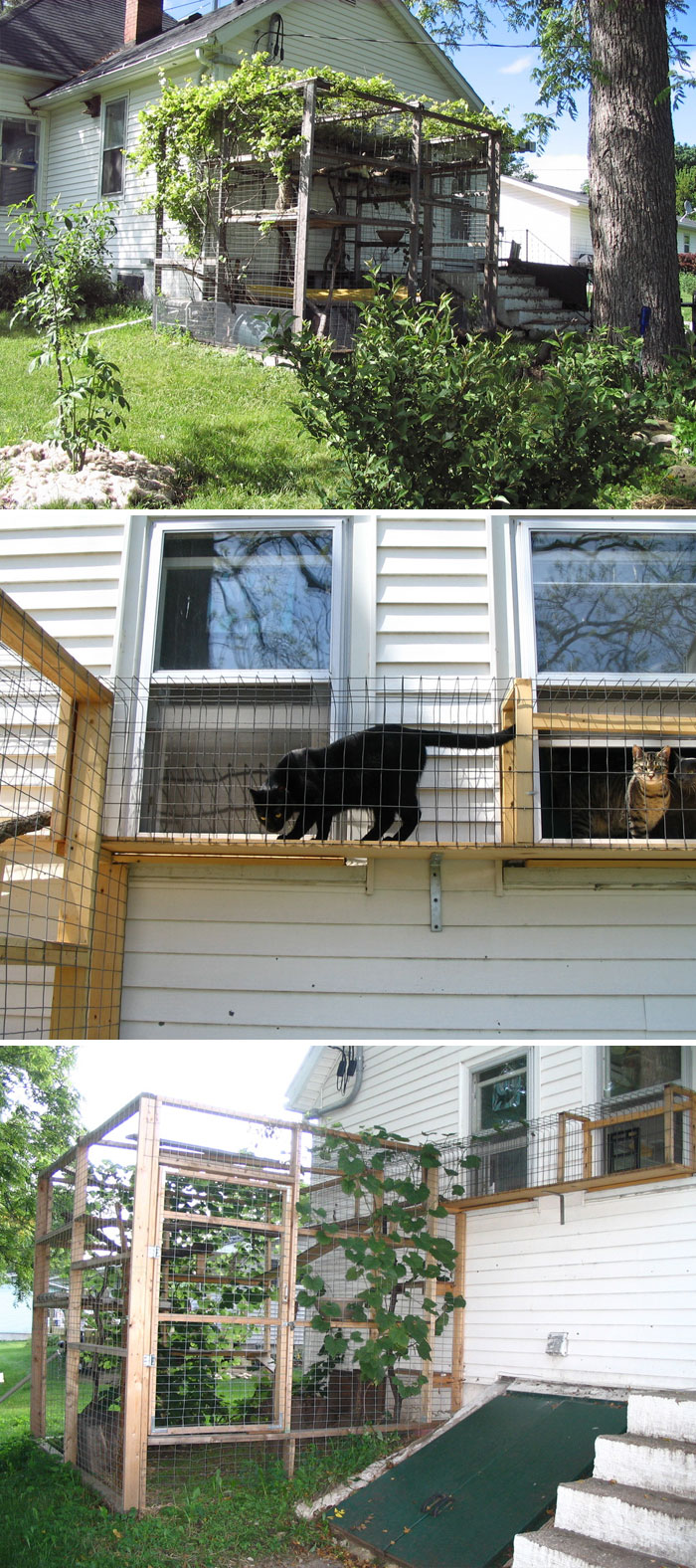 Apparently, Cat Patios, Known As Catios, Are A Thing And Your Kitty Will Love One (30 Pics)