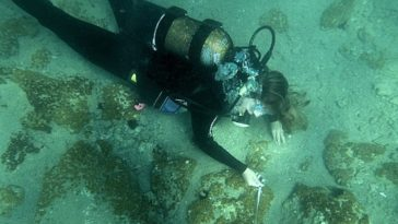 Divers Find Massive Ancient Greek City Underwater In The Aegean Sea