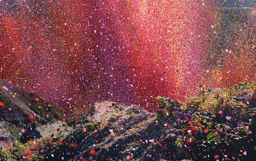 Millions Of Vibrant Flower Petals Rain Down On A Costa Rica Town