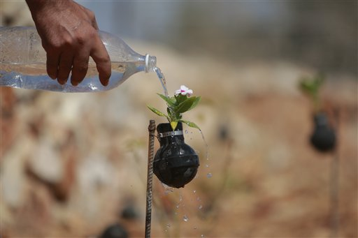 Woman Plants Flowers In Used Army Tear Gas Grenades That She Collects