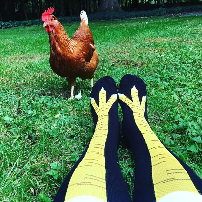 Turns Out, You Can Buy Chicken Leg Socks And They Are Hilarious (23 Pics)