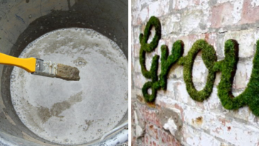 Moss Graffiti Might Just Be The Coolest DIY Project Ever