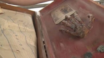 Family Find Dried Up Severed Hand And Pirate Treasure In Their Grandpa's Attic