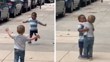 Two-Year-Old Best Friends Race To Hug Like They Haven't Seen Each Other For Years After 2 Days Apart