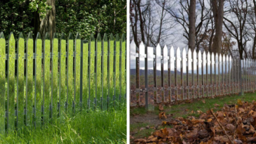 These Mirrored Fences Become Invisible By Camouflaging With The Seasons