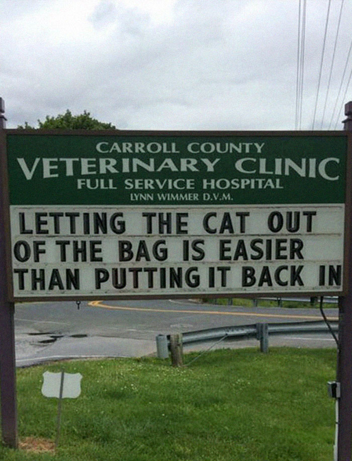 30 Hilarious Cat Jokes That Vet Clinics Have Put On Their Signs