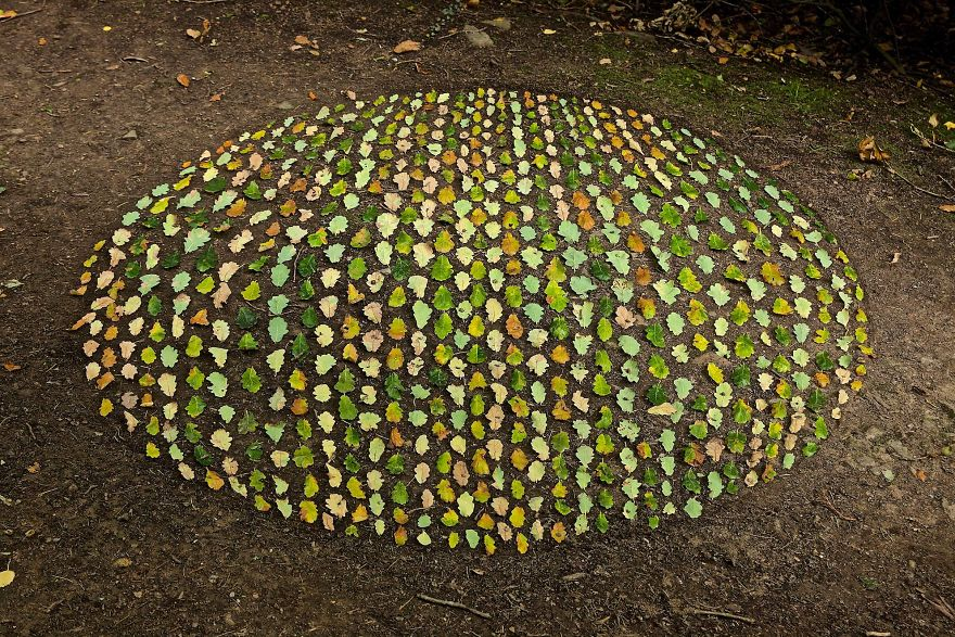 Man Spends Hours Creating Stunning Works Of Art By Arranging Natural Objects For You To Find (100 Pics)