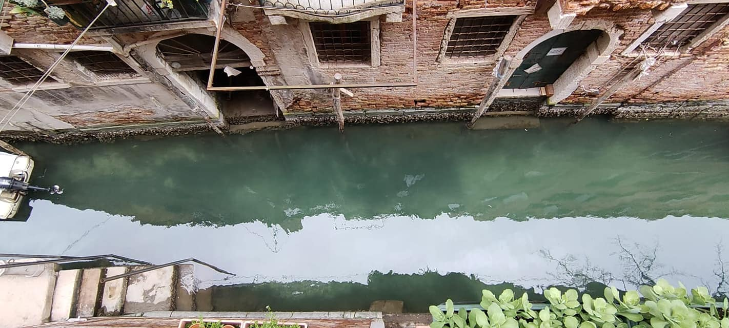Fish Become Visible As Venice Canals Water Goes Crystal Clear After Coronavirus Lockdown