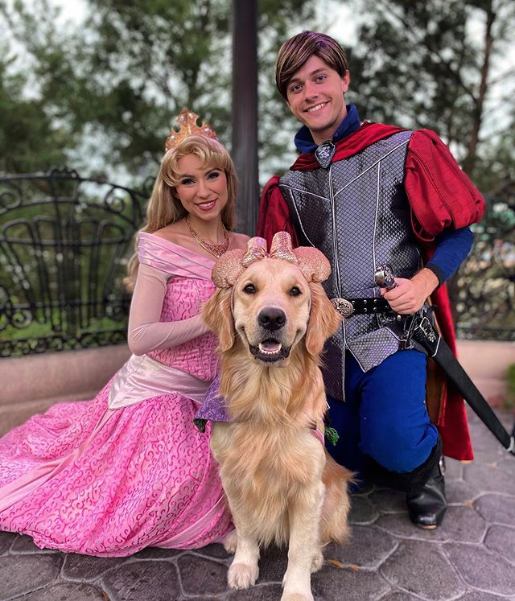 This Service Dog Goes To Disney World 3 Times A Week And These 19 Pics Show How Much She Loves It