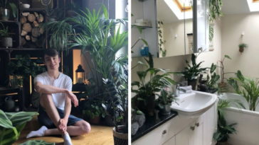 Man Dubbed 'Jungle Boy' Has 1,400 House Plants In His One-Bedroom House That Take Him Hours To Water Everyday