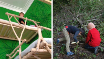 Father Builds His Kids Loft Beds Out Of Wood They Took From The Forest