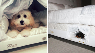 Company Will Install A Tiny Compartment In Your Bed For Your Pet So That You Can Sleep Together